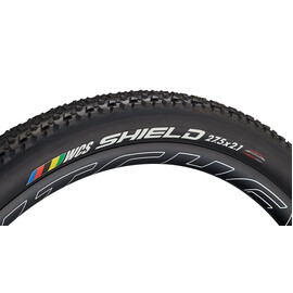 Copertone Ritchey WCS Shield